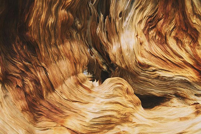 Especialistas de la madera carpintería fdez vega